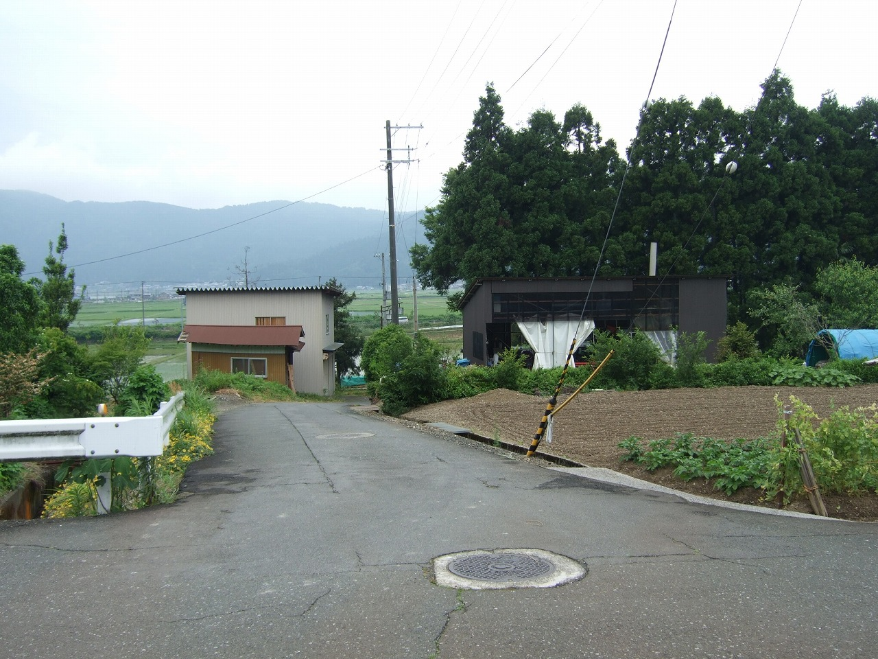 20082.jpg